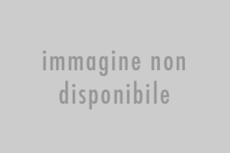 » Filetti di arancia candita ricoperti di cioccolato